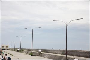 港に飛ぶカモメ型街灯