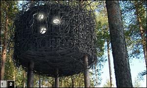 The Bird's Nest - Treehotel