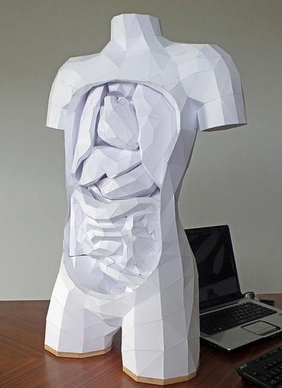 paper torso