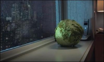 Lonely Lettuce - Kraft