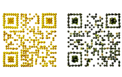 The Cantina Bell QR Code
