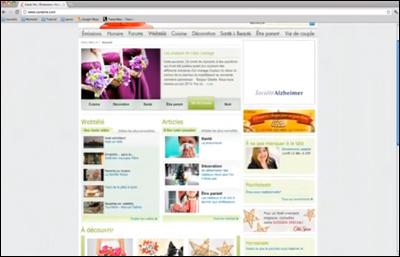 Alzheimer Interactive Web Ad
