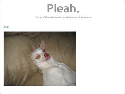 Pleah.