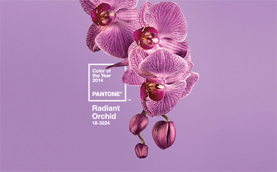 Pantone 18-3224 Radiant Orchidに!|2014 Pantone Color of the Year