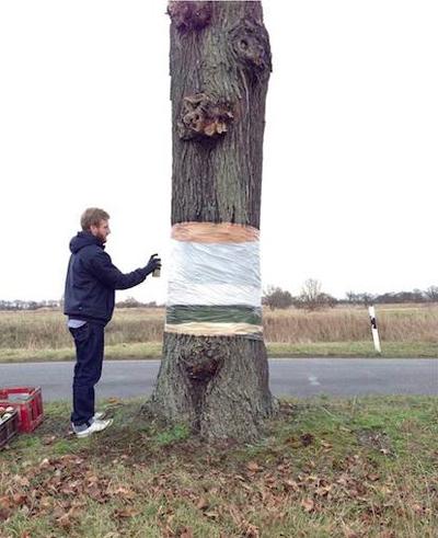 そびえ立つ樹の幹の一部を消し去るアート