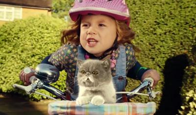 Three - Sing It Kitty music video