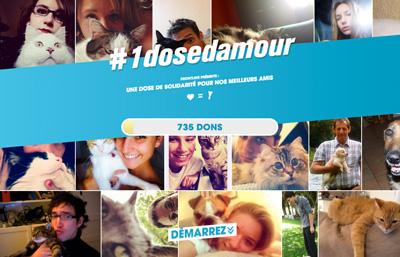#1dosedamour - Frontline