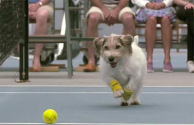 Venus Williams and The Best Ball Boys in the World