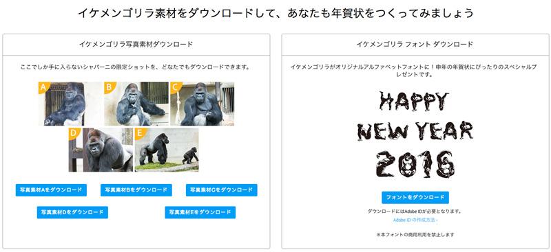 今年こそ、早めに準備!自慢の写真で作る、あなただけの年賀状。|Adobe Creative Cloudフォトグラフィプラン