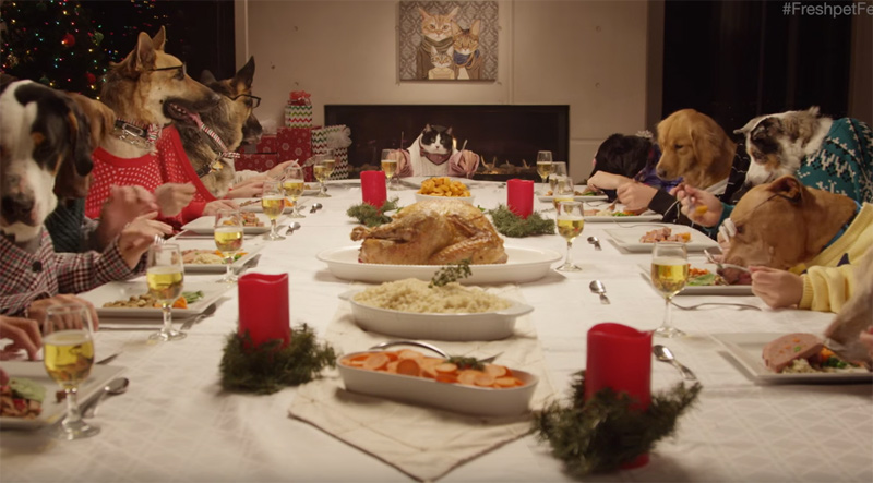 Freshpet Holiday Feast