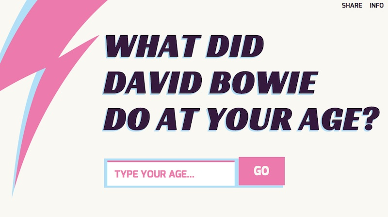 WHAT DID BOWIE DO?