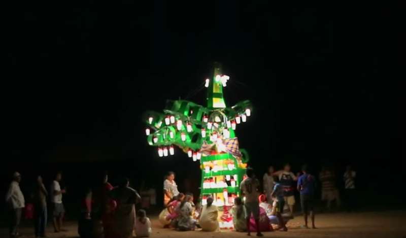 Kai tree light up the days of Colombians