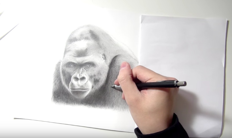 シャー神が描くイケメンゴリラ/Metrosexual Gorilla drawn with a mechanical pencil.