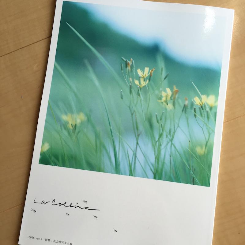 たねやとクラブハリエによる無料冊子「La Collina(ラ・コリーナ)」2016 vol.7
