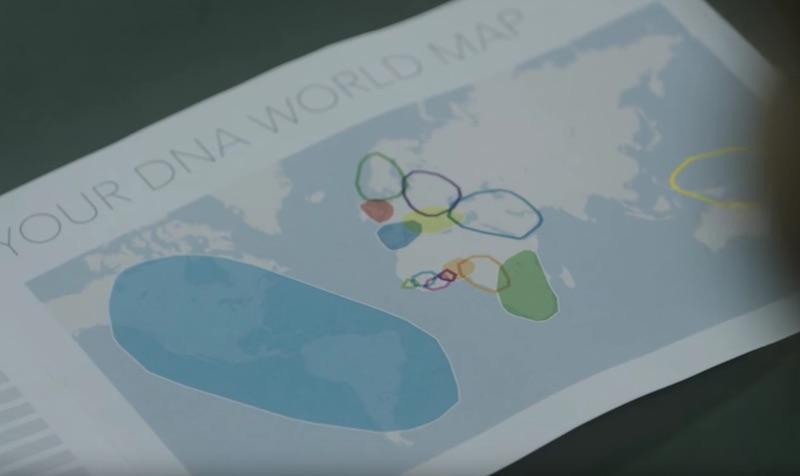 momondo – The DNA Journey