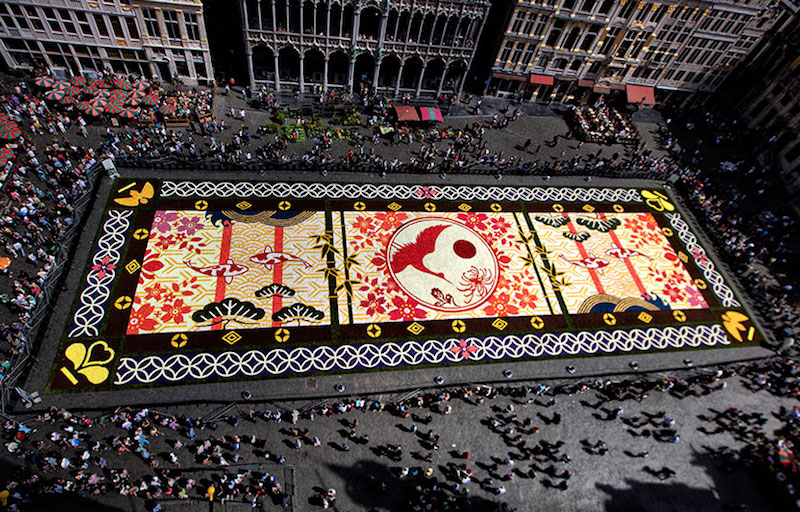 Brussels - FlowerCarpet 2016