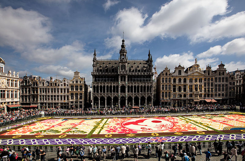 Brussels - FlowerCarpet 2016
