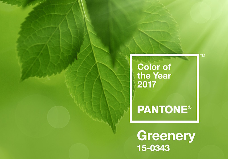Color of the Year 2017 PANTONE 15-0343 Greenery
