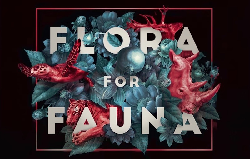 Flora for Fauna