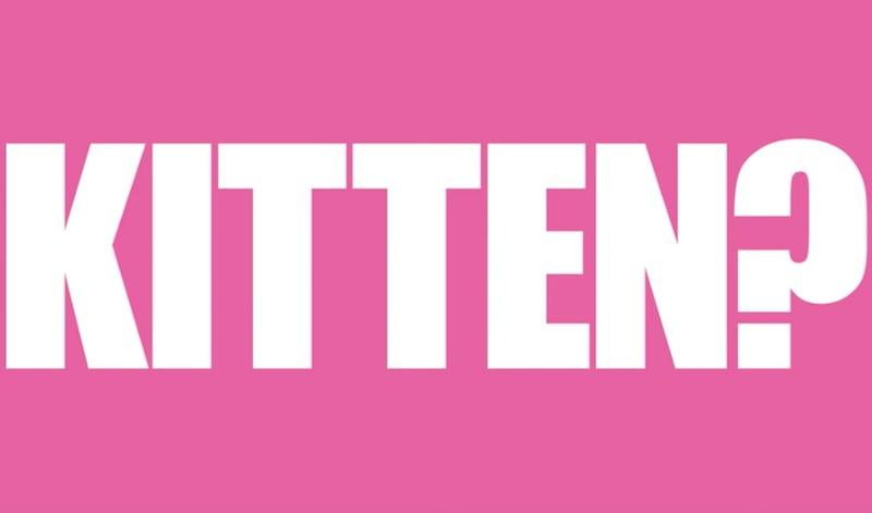 THINK! Pink Kittens film