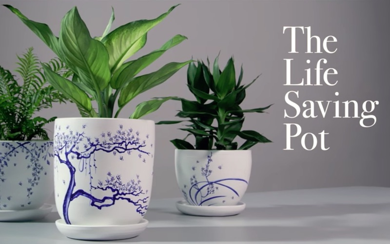 The Life-Saving Pot | Manulife Singapore