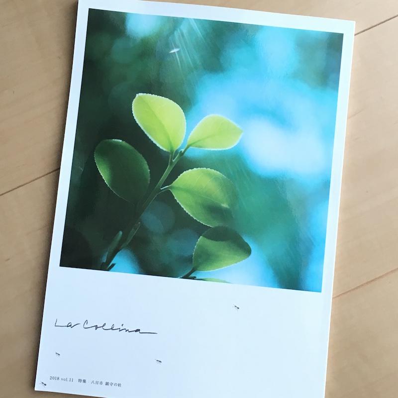 たねやとクラブハリエによる無料冊子「La Collina(ラ・コリーナ)」2018 vol.11