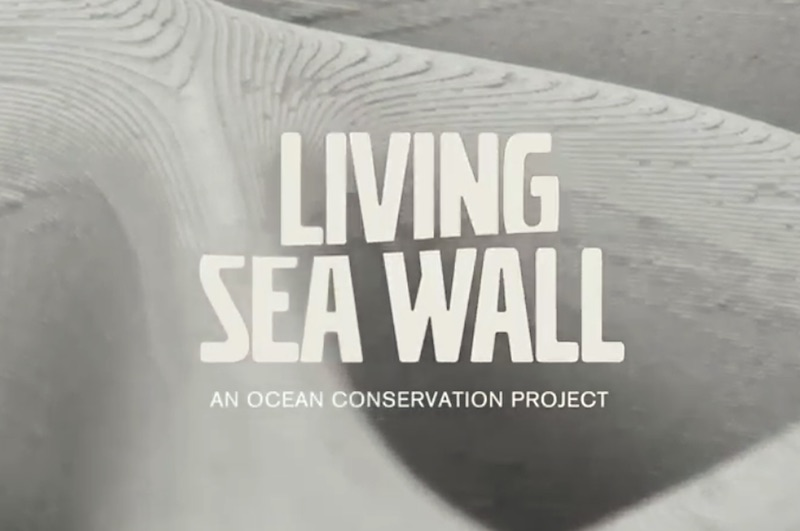Living Seawall – re-thinking sustainability