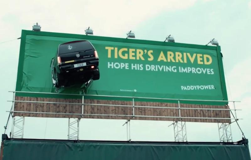 Tiger's Arrived