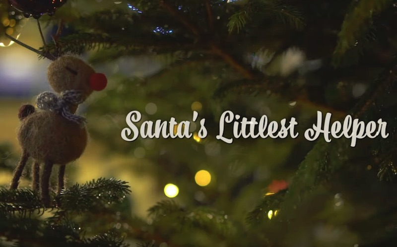 英国動物虐待防止協会 RSPCA Christmas advert 2019 - Santa's littlest helper