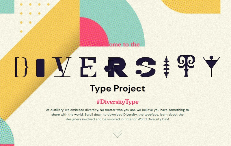The Diversity Type project