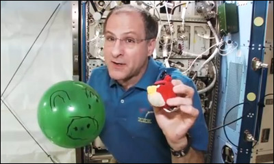Angry Birds & Pigs Go Weightless!!!