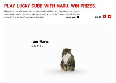 LUCKY CUBE WITH MARU | UNIQLO - UNIQLO