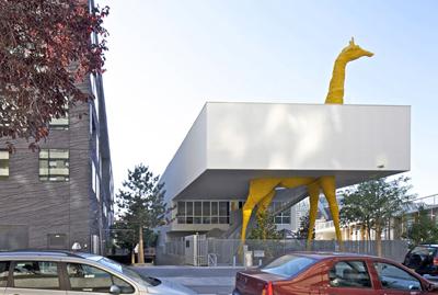 Day nursery of the giraffe