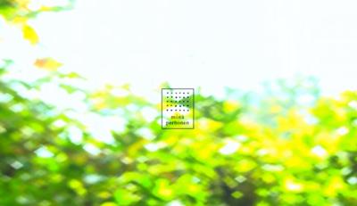minä perhonen 2013→ Spring / Summer「春はるるる」