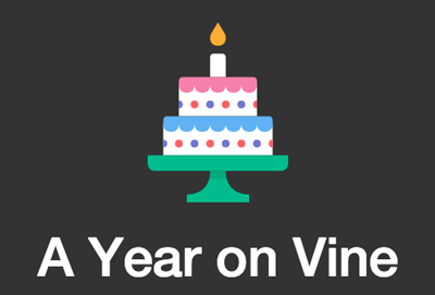 A Year on Vine