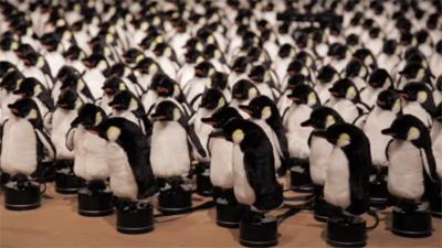 Penguins Mirror