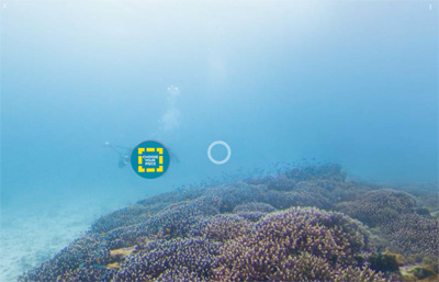 See it, Save it | It's your reef