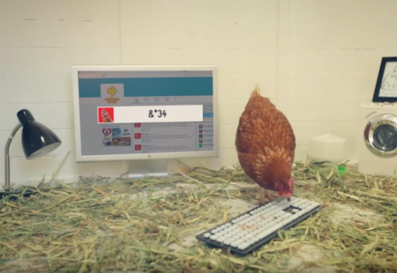 Chicken Treat - The first tweeting Chicken