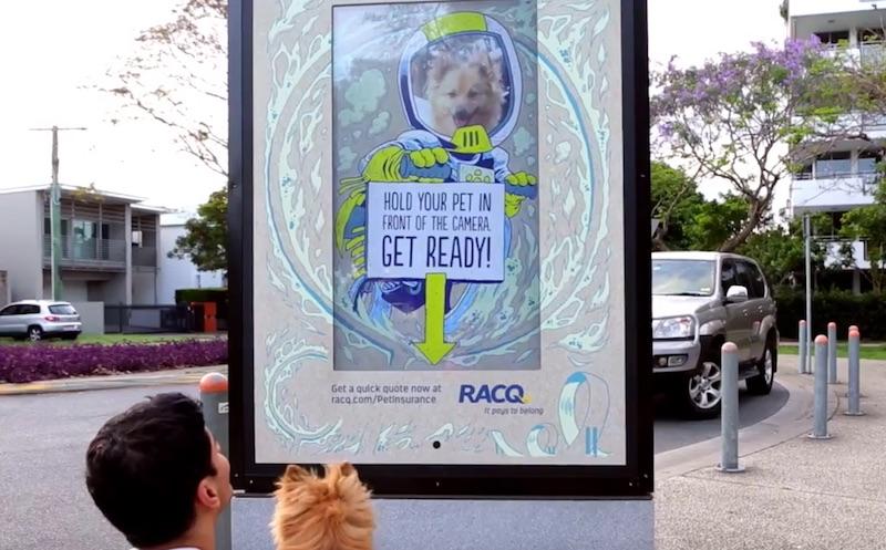 Pet selfie campaign by RACQ