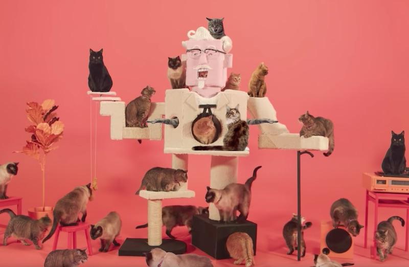 Colonel Sanders Cat Climber