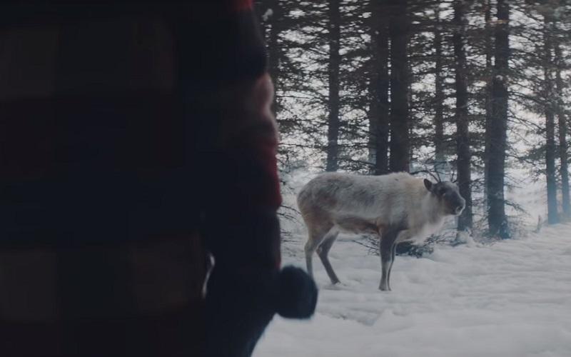 Air Canada: Lost Reindeer