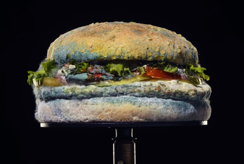Burger King   The Moldy Whopper