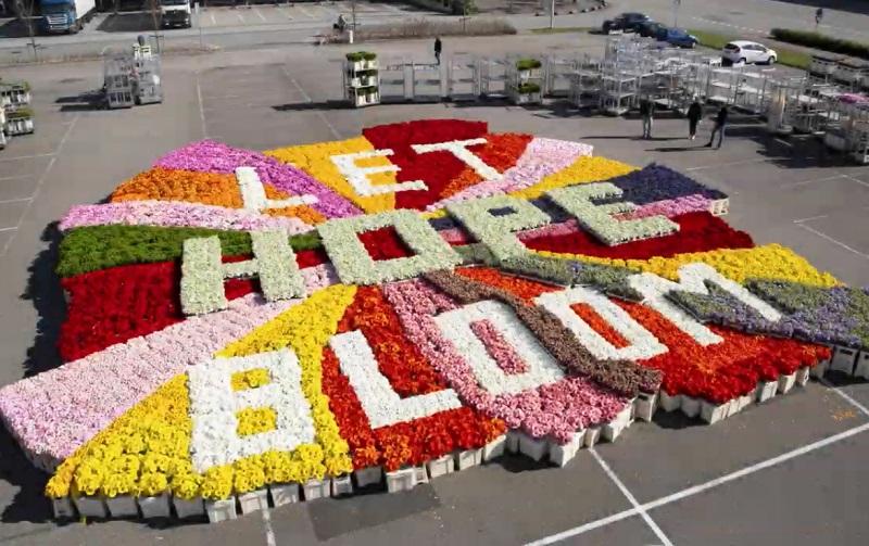Let Hope Bloom