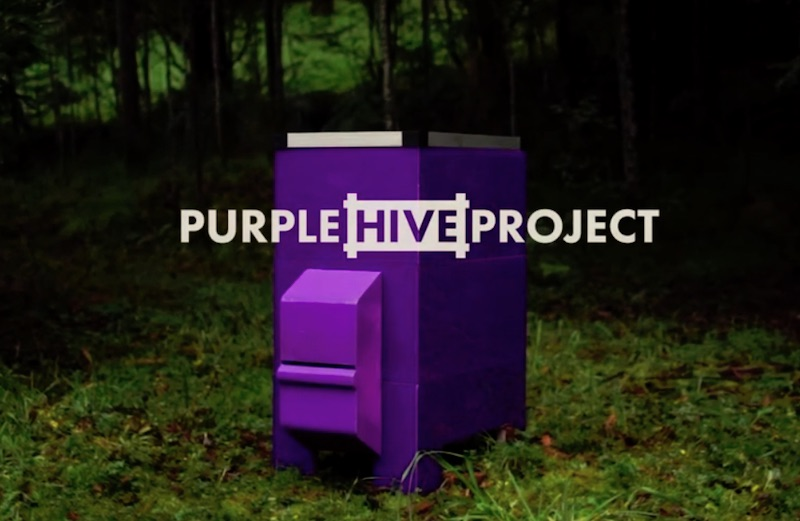 Purple Hive Project